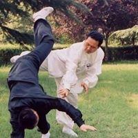 Zhaobao Taichi - Free Trials, Zhao Bao Tai Chi