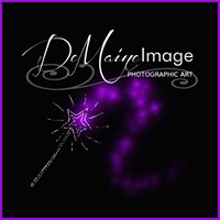 Demaine Image Photography