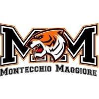 Basket Montecchio Maggiore