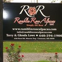 Ramblin Rose Alpacas
