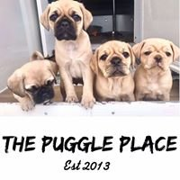 The Puggle Place
