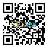 VOXstock
