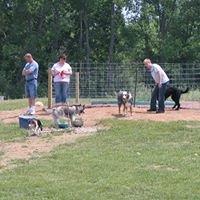 Arise Church Community Dog Park