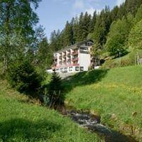 Hotel-Restaurant Waldeck