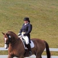 D.A. Dressage at Dream Acres Equestrian Center