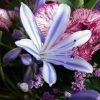 Poppies Florist Torpoint