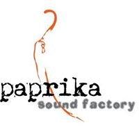 Paprika Sound Factory/Studio Papryka i Synowie