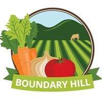Boundary Hill