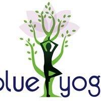 The Blue Yoga Studio
