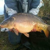 New Farm Fishery, Maidenhead