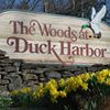 Duck Harbor Group