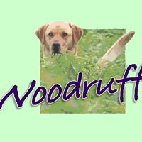 Woodruff Gundogs