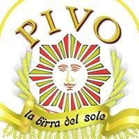 PIVO Bagheria