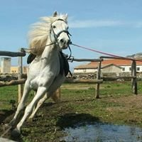 ASD Assial - Cavalcando l'Asinara