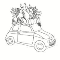 Auto Rosellon