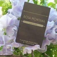 Rosa Montana /Artisan Fleuriste