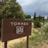 Bodega Torres
