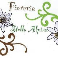 Fioreria Stella Alpina di Bassan Giada
