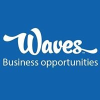 Waves Car Wash Business Opportunities
