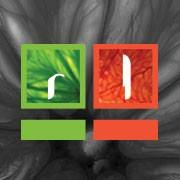 Red Lime Creative, Inc.