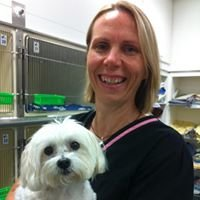 Animal Physiotherapy Solutions