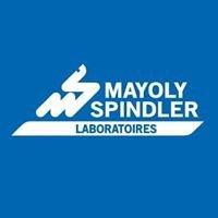Mayoly Spindler México