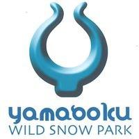ヤマボクワイルドスノーパーク/ Yamaboku Wild Snow Park , Nagano
