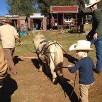 Rock-n-Horse Ranch