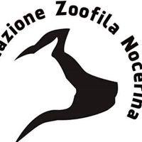 Associazione Zoofila Nocerina Onlus