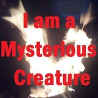 Mysterious Creatures Art Collective