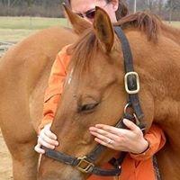 Kate Meyers REMT: Not Just Horse Massage