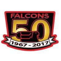 Falcons Hockey Association