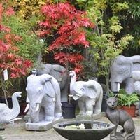Bambus-Kultur