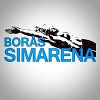 Borås Simarena