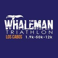 Whaleman Los Cabos