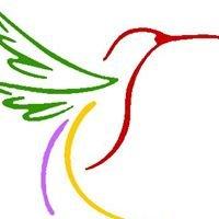 Asociación para la Defensa de la Infancia Alebrije