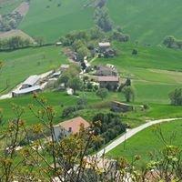 Azienda Agricola Grifi Sergio