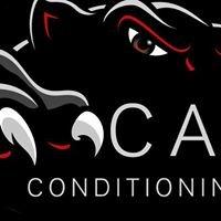 Catt Conditioning Performance