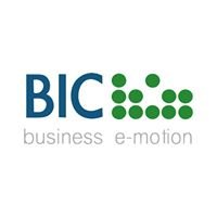 BIC Consulting