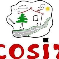 COSIT