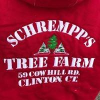 Schrempp's Christmas Tree Farm