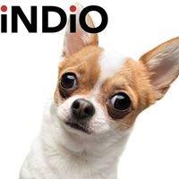 Indio Internet