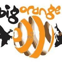Big Orange Watersports Ltd