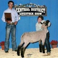 Prunty/Dyer Club Lambs