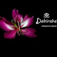 Dabirahe Resort Fan's Collections