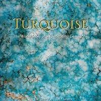 Talkin Turquoise