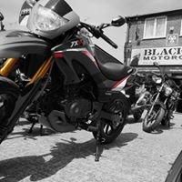 Black Dog Motorcycles