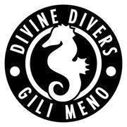 Divine Divers, Gili Meno