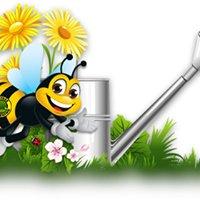 Busybee Gardening