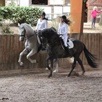 Centre Equestre Le Vergier, équitation et gîte en Ardèche
